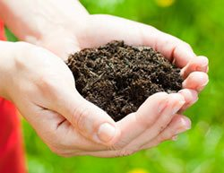 composting-sustainable